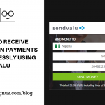 How to Receive Foreign Payments Seamlessly using Sendvalu